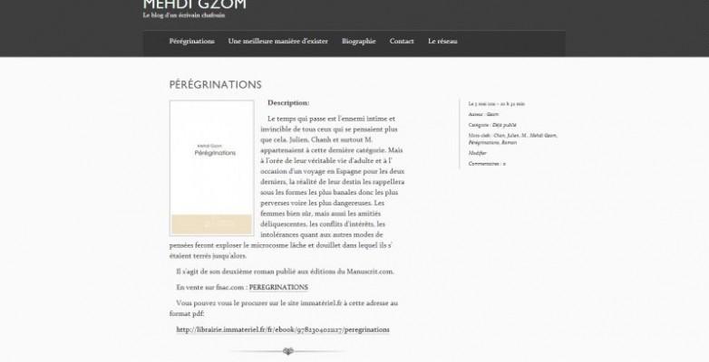 Mehdi-Gzom-le-blog-d-un-ecrivain-chafouin